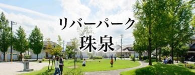 jisseki_tamaizumi