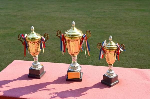 trophy-83115_640-600x398